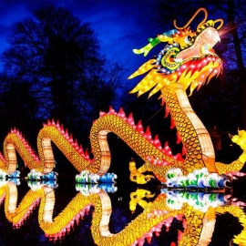 Asian Lantern Festival Lights Up The Sky In Sanford