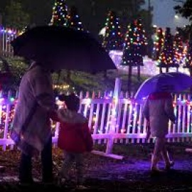 Light Up Your Holiday With These Christmas Lights In Gainesville