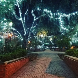 Must-See Christmas Lights In the 850