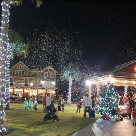 Things To Do in Gainesville and Ocala This Weekend 12/20-12/23