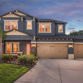 Where to Live in Wesley Chapel, Florida