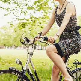 Best Bike Trails in Sarasota