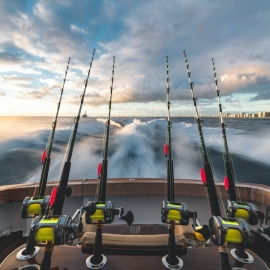 Where To Go Fishing in Sarasota and Bradenton