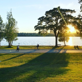 7 Parks in St. Pete and Clearwater You Must Visit During the Fall