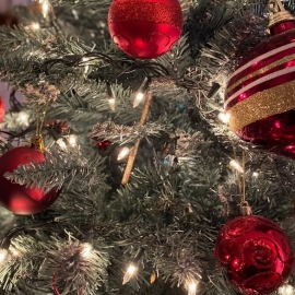 Things To Do in Sarasota This Holiday Season