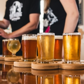 Celebrate National Beer Day in Sarasota | Enjoy The Best Beers in Sarasota April 7th
