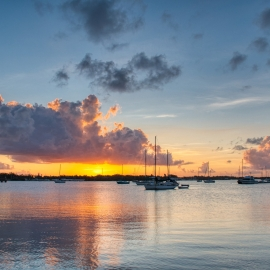 Things To Do This Summer in Sarasota 2021