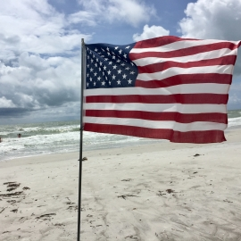 Things To Do in Sarasota This Weekend | May 28th - 31st | Memorial Day in Sarasota