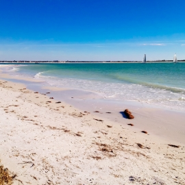 Things To Do in St. Pete This Weekend | June 18th - 20th | Father's Day in St. Petersburg