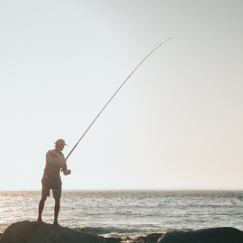 Best Places To Go Fishing in St. Pete and Clearwater