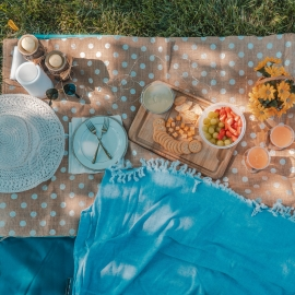 Best Places For A Picnic in Tampa