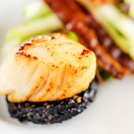 Restaurants With the Best Scallops in Tampa