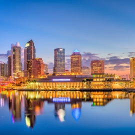 Things To Do For 813 Day in Tampa Bay