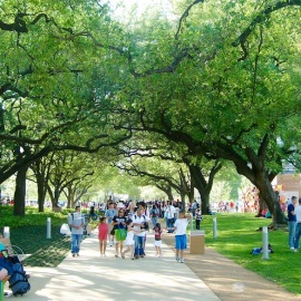 Summer Activities in Houston, Texas