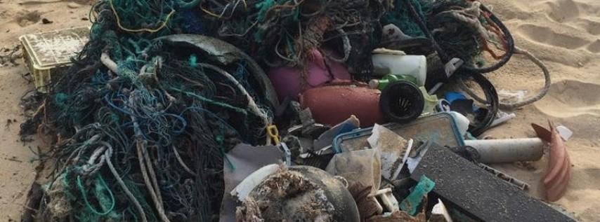 Waikīkī Aquarium To Host Kailua Beach Clean Up On March 3