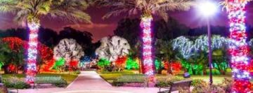 Holiday Lights at Largo Central Park