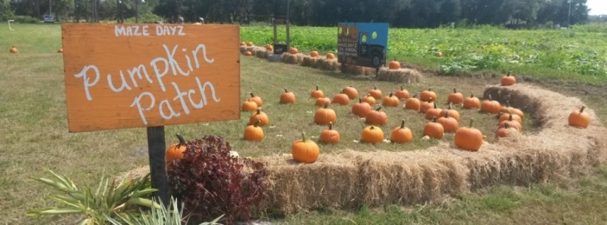 Maze Days Fall Festival 2019