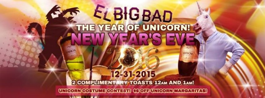YEAR of the Unicorn aka New Years Eve Downtown