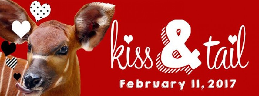 Kiss & Tail