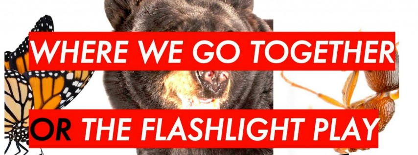 Where We Go Together or The Flashlight Play