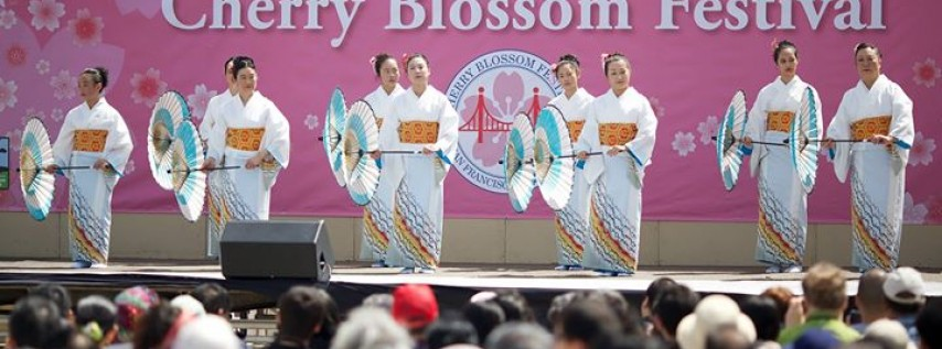 50th Northern California Cherry Blossom Festival - 2nd Weekend