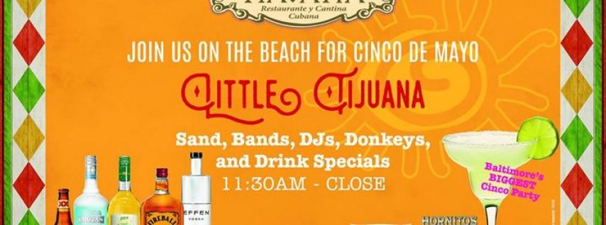 Little Tijuana Cinco Celebration!