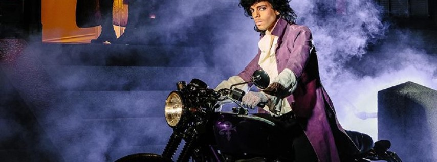 Purple Brainz 5: A Halloween Prince Tribute
