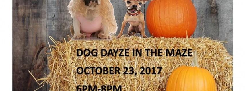 Dog Dayze in the Maze!