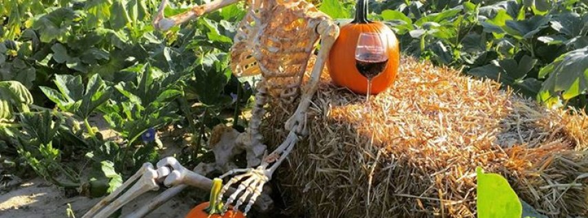 Gourds, Goblets and Ghouls Festival