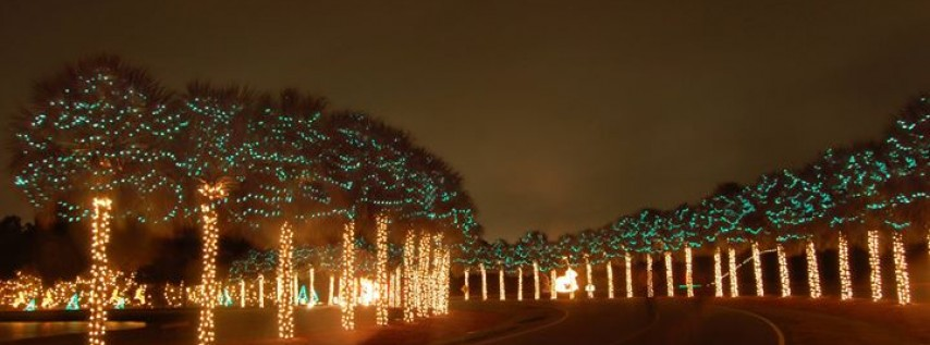 Holiday Festival of Lights Fun Run & Walk - SOLD OUT
