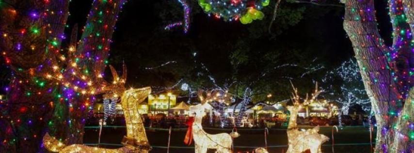 Christmas Tree Orlando Fl