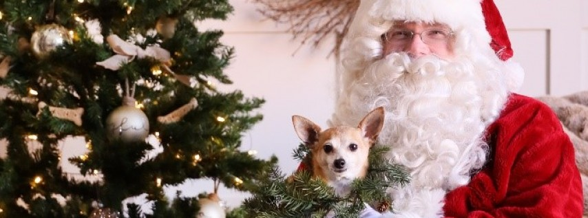 Artists for Animals Invites Four-Legged Friends for Photos with Santa