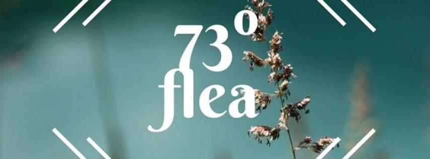 73 Degree Flea Indie Market Launch