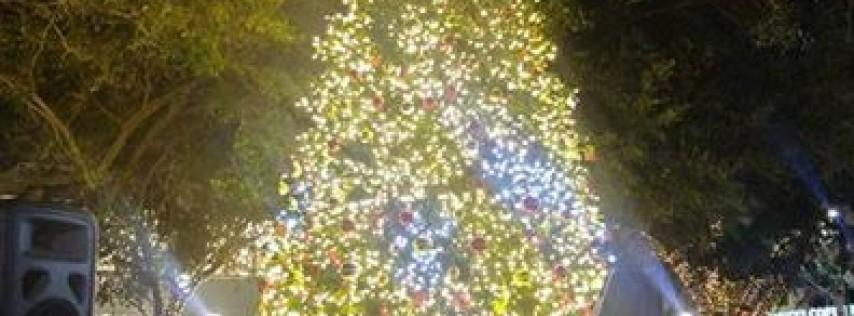 Downtown Sarasota Tree Lighting Celebration
