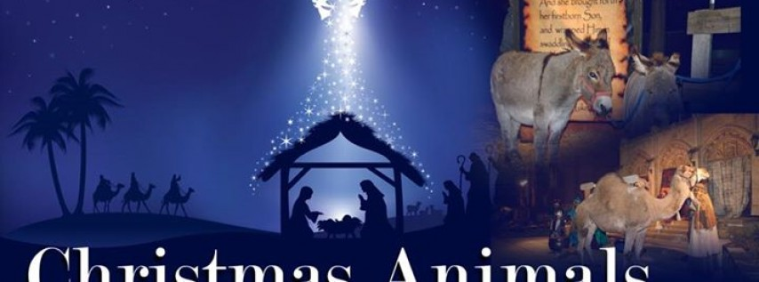 Christmas Animals - A Children's Christmas Musical