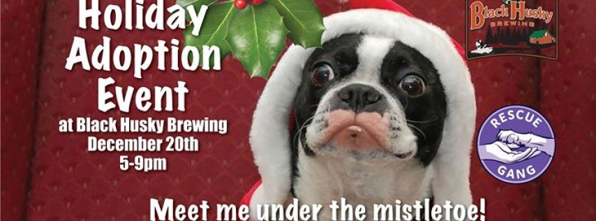 Holiday Adoption Event
