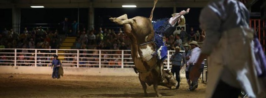 Santa Rosa County Fair Rodeo Tallahassee Amp Panama City Fl