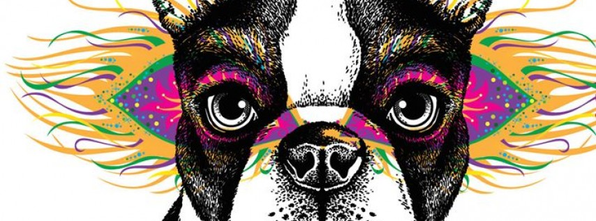 The 3rd Annual Mardi Gras Dog Parade