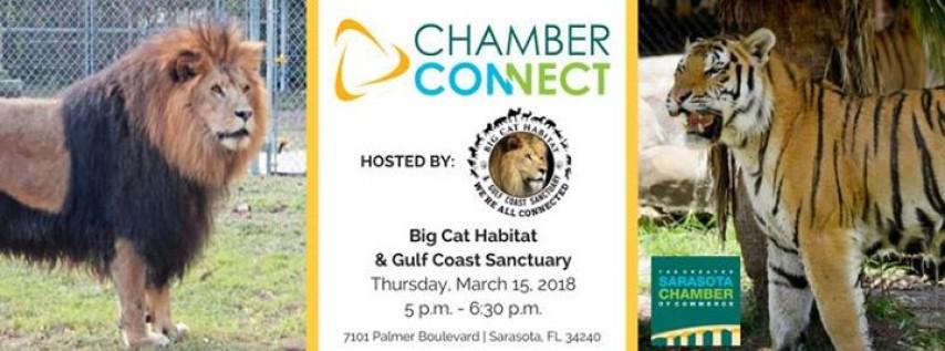 Chamber Connect at Big Cat Habitat