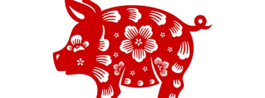 Chinese New Year, Year of the Pig Celebration