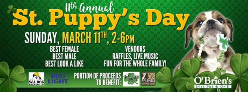 11th Annual St. Puppy's Day