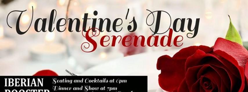 St. Petersburg Opera Presents: Valentine's Day Serenade