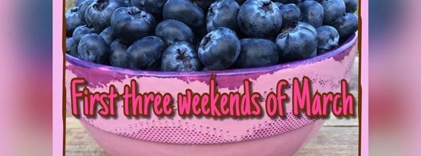 Fruitville Grove Berry Festival