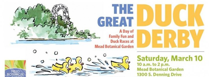 The Great Duck Derby at Mead Botanical Garden