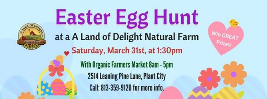 Easter Egg Hunt at A Land of Delight Natural Farm