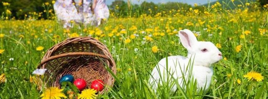 Free Annual Easter Egg Hunt!