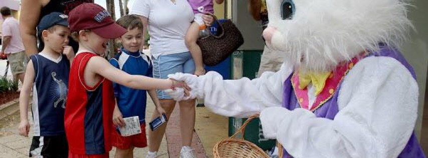 Easter Bunny Meet and Photo Op Free