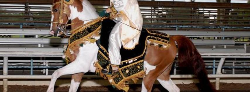 The Arabian Celebration