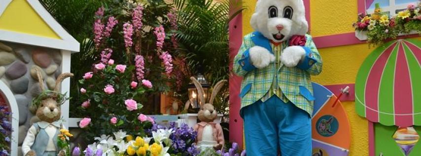 Easter Bunny Photos at Bunnyville