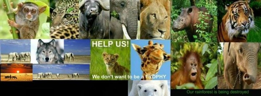United For Endangered Wildlife